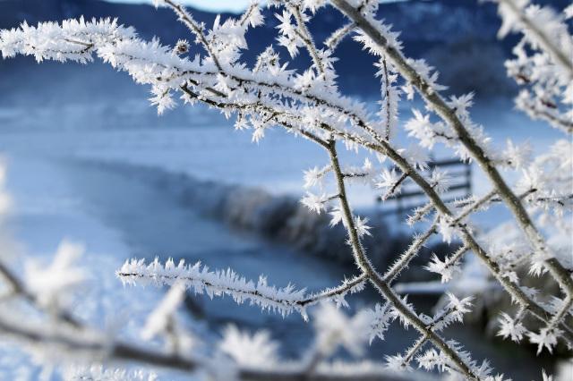 Winter 5=4