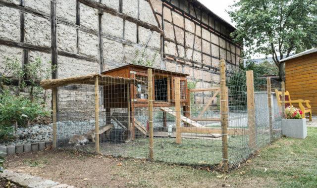 Kaninchengehege im LinderHof