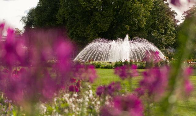 Blick auf Springbrunnen egapark BUGA